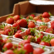 Strawberries (organic, Kent)