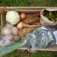 Organic vegetable box scheme kent