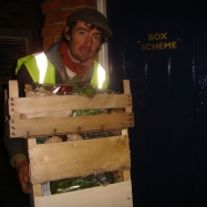 Organic vegetable box delivery, Kent